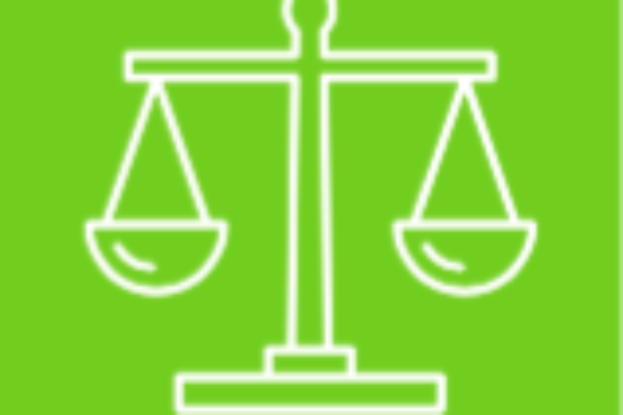 Using Legal Advocacy to Achieve Social Change